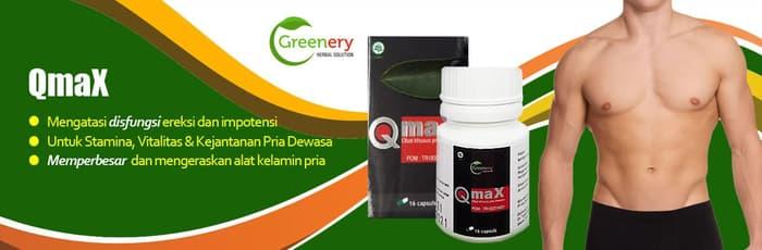 Q Max